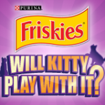 Will Kitty Play With It? Watch and Find Out!