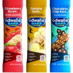 Back To School Snack Ideas: Odwalla® Bars For Kids