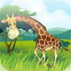 tap zoo hd