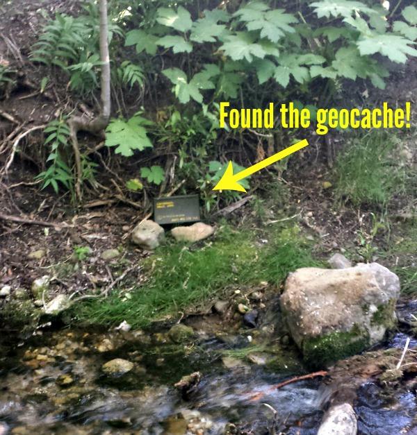 found the geocache