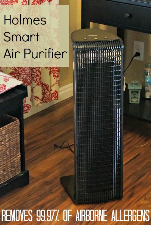 holmes air filter