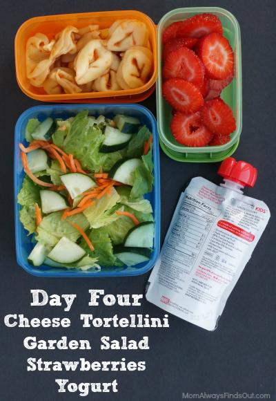 school lunch ideas day 4