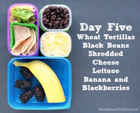 school lunch ideas day 5