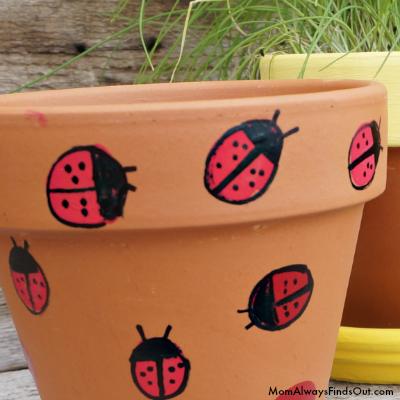 ladybug pots