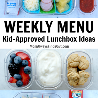A one week meal plan for kid-approved school lunch Ideas with Horizon Organic