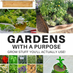 GARDENS with a purpose - Grow Stuff You'll Actually Use!